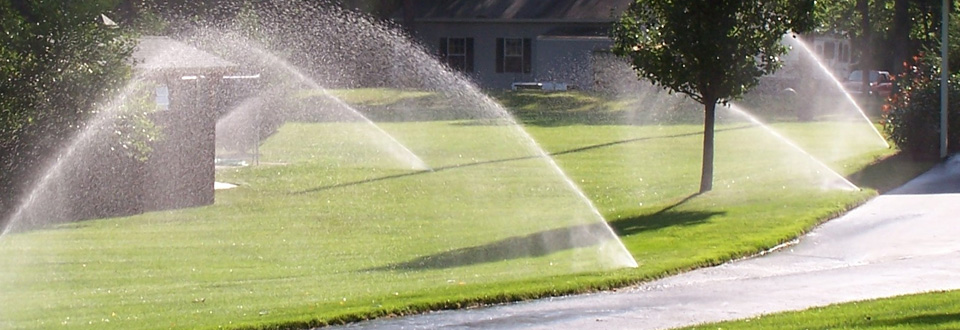Irrigation: Design / Install / Service